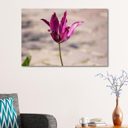 Pembe Çiçek resim2