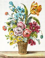 Rengarenk Çiçekler - CT-C-099