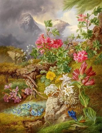 Renklenen Doğa resim