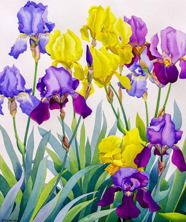 Renkli Çiçekler resim