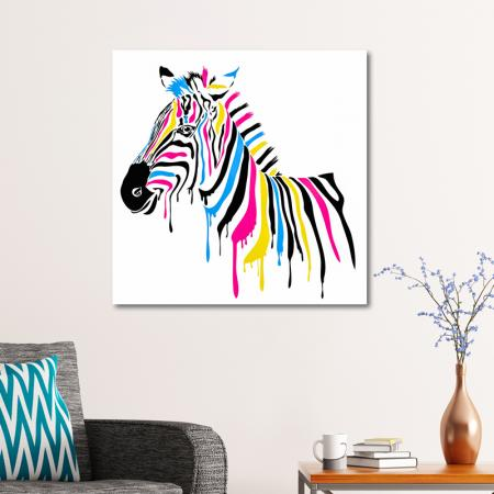 Renkli Zebra resim2