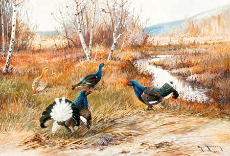 Tavus Kuşları resim