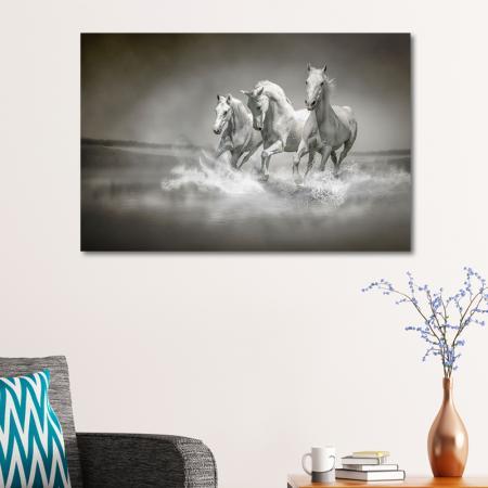 Üç Beyaz At resim2