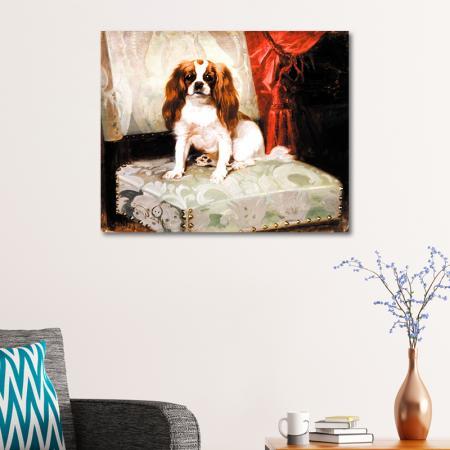 Uzun Kulaklı Köpek resim2