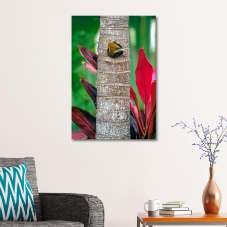 Ağaçkakan resim2