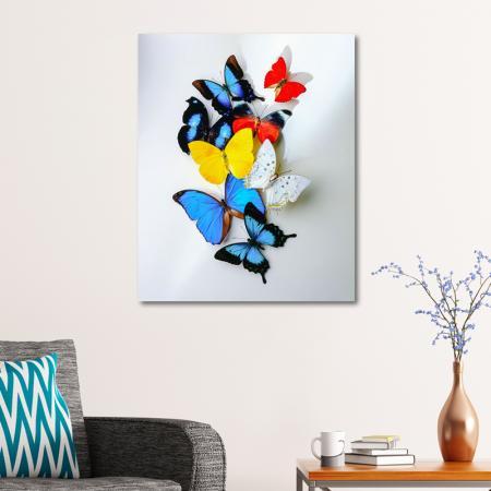 Kelebekler resim2