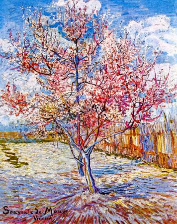 Peach Trees in Blossom resim
