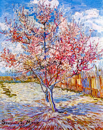 Peach Trees in Blossom 0