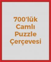 dl22206