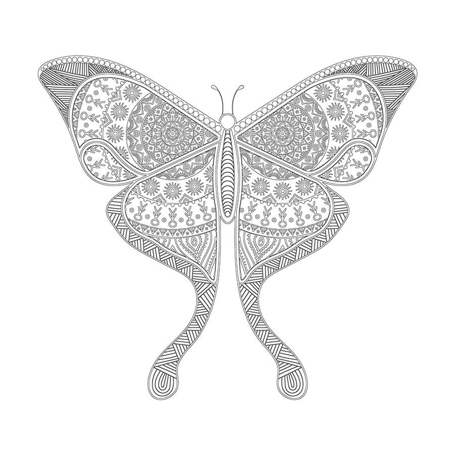 Kelebek Desenli Boyanabilir Tablo Boyanabilir Tablo Cercevelet